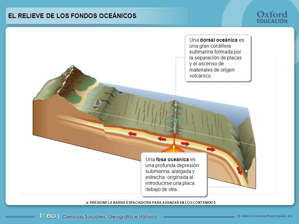 EL RELIEVE DE LOS FONDOS OCEÁNICOS