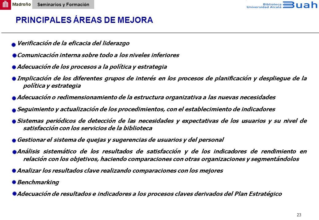 PRINCIPALES ÁREAS DE MEJORA