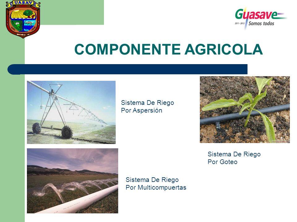 COMPONENTE AGRICOLA Sistema De Riego Por Aspersión