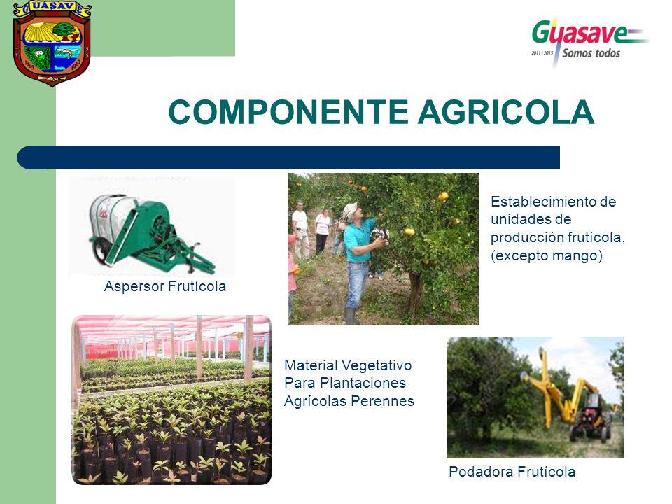 COMPONENTE AGRICOLA Establecimiento de unidades de producción frutícola, (excepto mango) Aspersor Frutícola.
