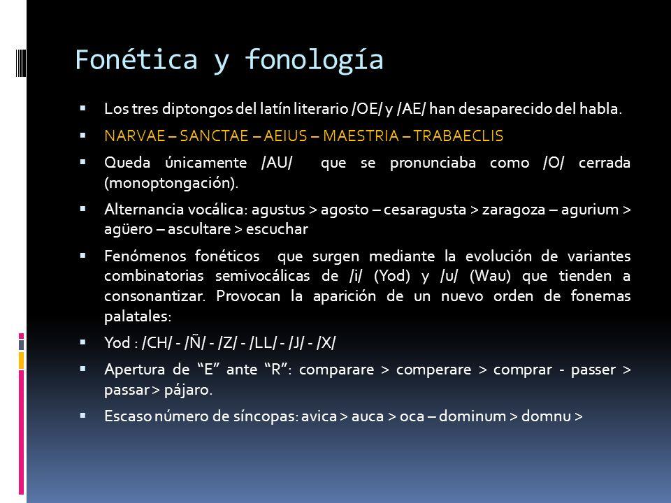 Fonética y fonología Los tres diptongos del latín literario /OE/ y /AE/ han desaparecido del habla.