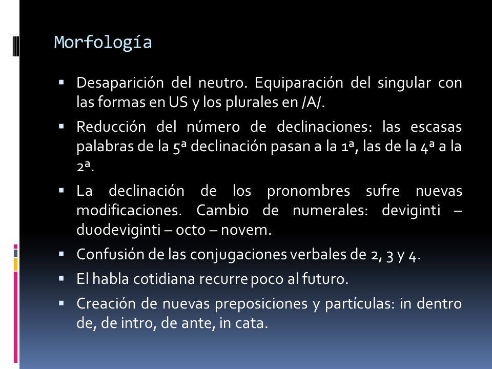 Morfología Desaparición del neutro. Equiparación del singular con las formas en US y los plurales en /A/.