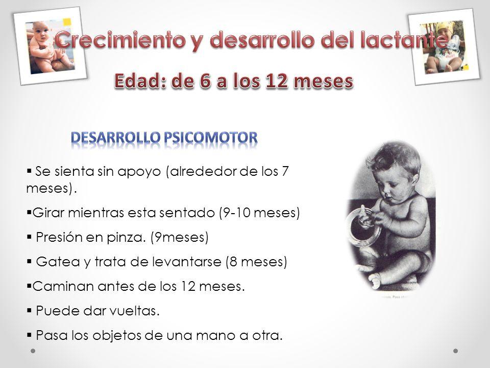 Crecimiento y desarrollo del lactante DESARROLLO PSICOMOTOR