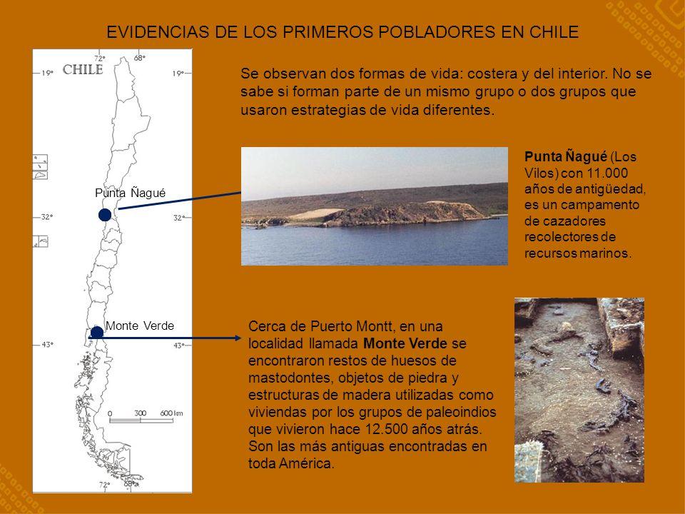 EVIDENCIAS DE LOS PRIMEROS POBLADORES EN CHILE