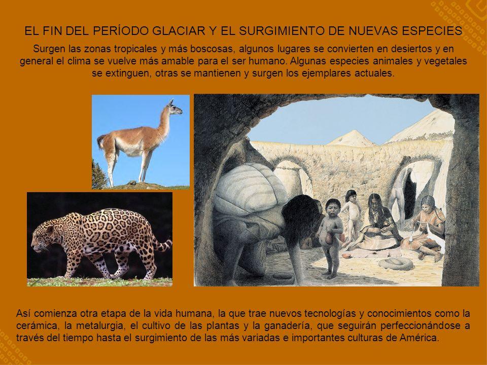 EL FIN DEL PERÍODO GLACIAR Y EL SURGIMIENTO DE NUEVAS ESPECIES