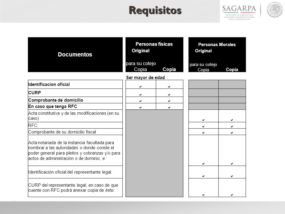 Requisitos Documentos Personas físicas Original Copia