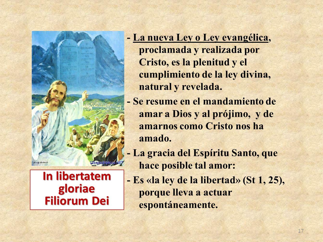 In libertatem gloriae Filiorum Dei
