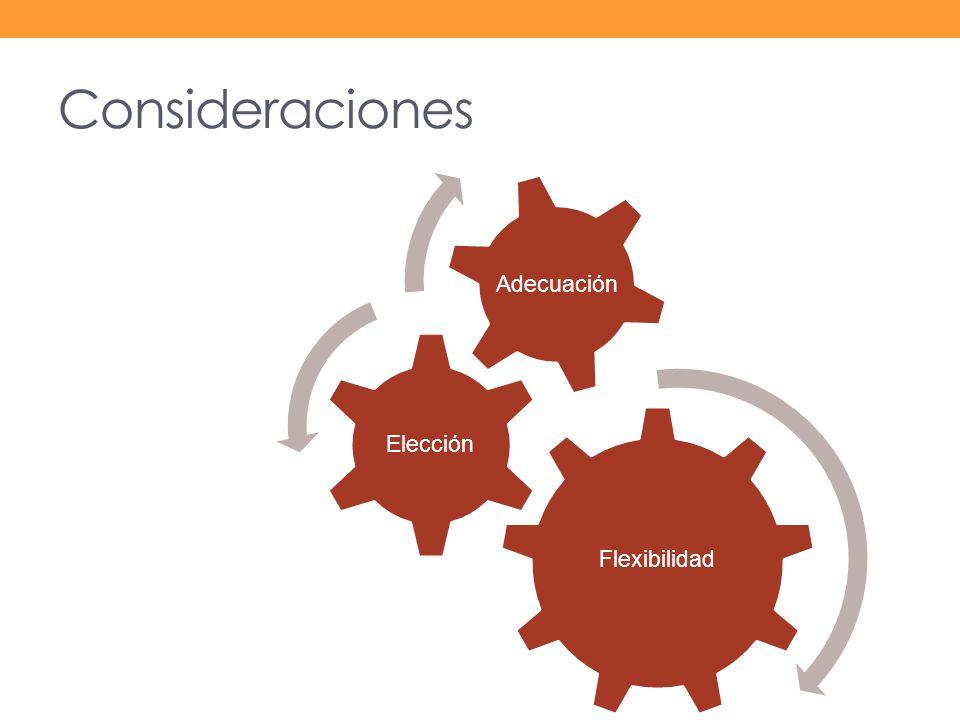 Consideraciones Flexibilidad Elección Adecuación