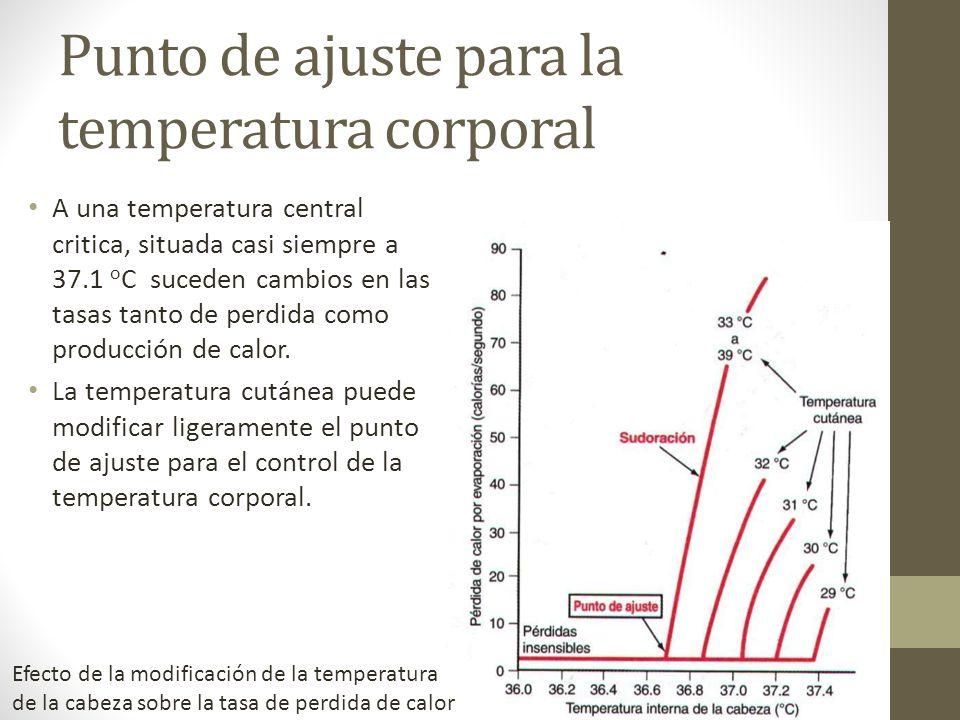 Punto de ajuste para la temperatura corporal