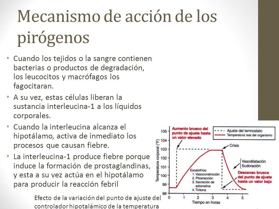 Mecanismo de acción de los pirógenos