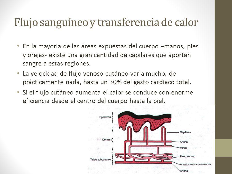 Flujo sanguíneo y transferencia de calor