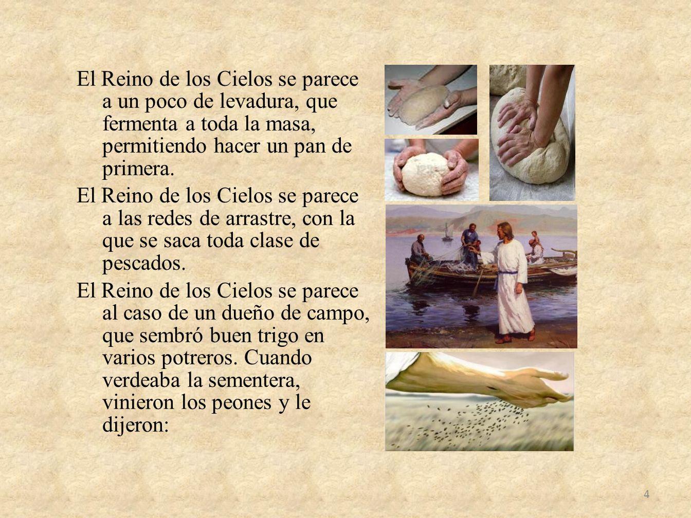 El Reino de los Cielos se parece a un poco de levadura, que fermenta a toda la masa, permitiendo hacer un pan de primera.