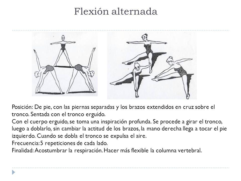 Flexión alternada Posición: De pie, con las piernas separadas y los brazos extendidos en cruz sobre el tronco. Sentada con el tronco erguido.