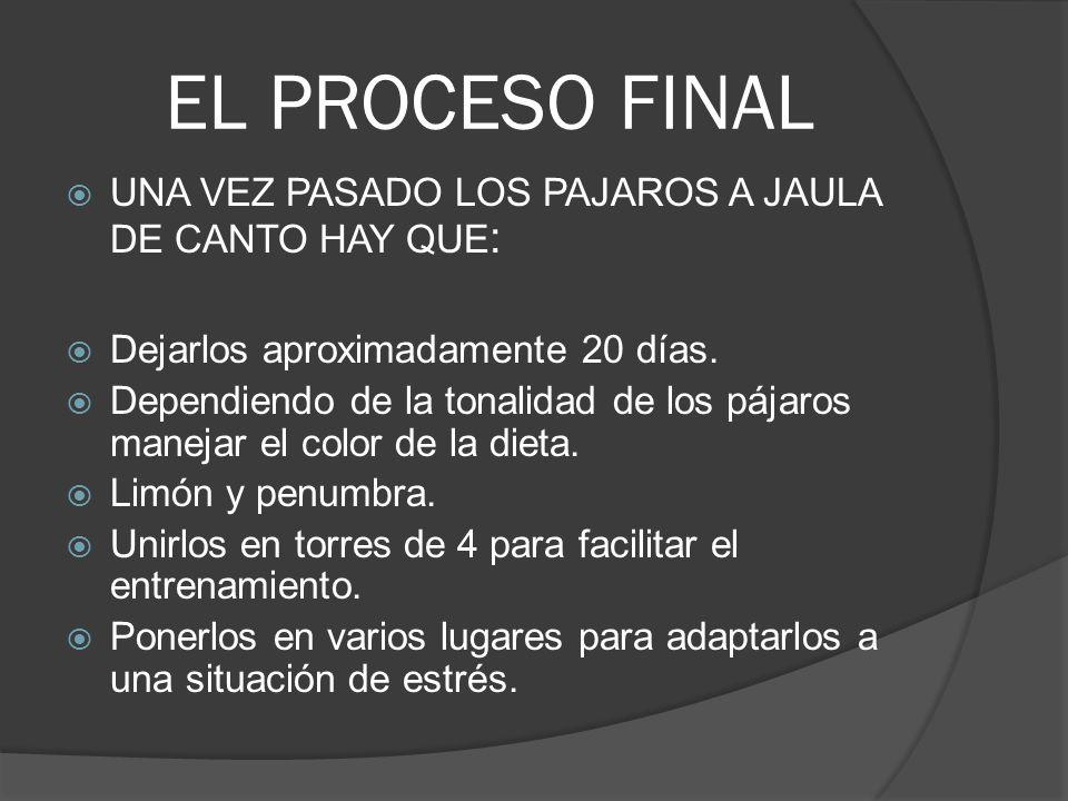 EL PROCESO FINAL UNA VEZ PASADO LOS PAJAROS A JAULA DE CANTO HAY QUE: