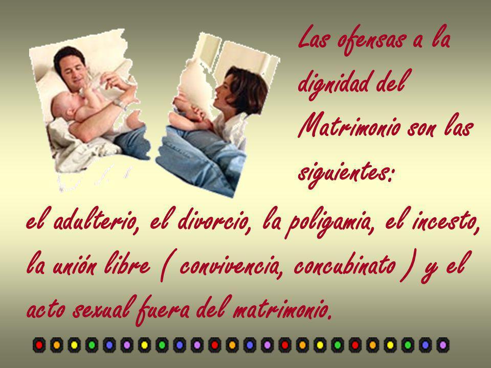 Las ofensas a la dignidad del. Matrimonio son las. siguientes: el adulterio, el divorcio, la poligamia, el incesto,
