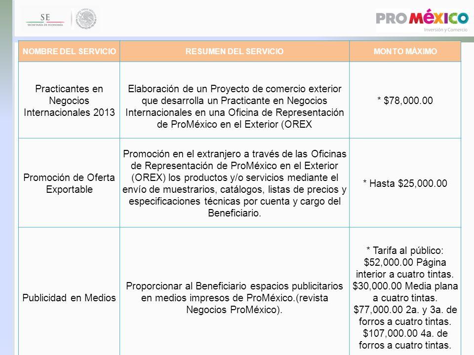 Practicantes en Negocios Internacionales 2013