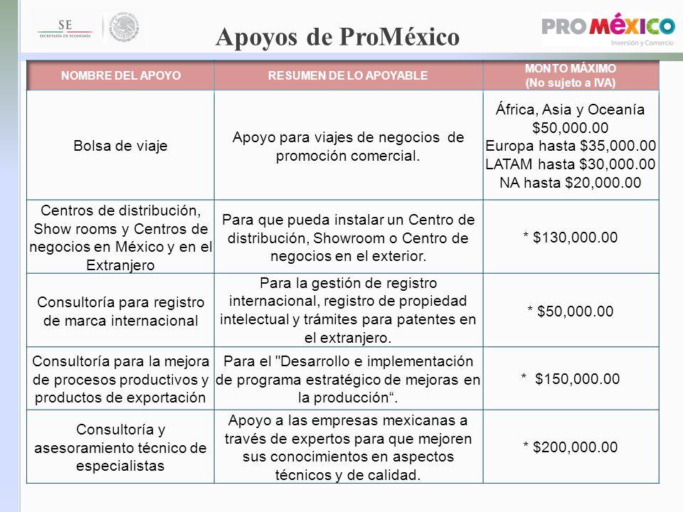 Apoyos de ProMéxico Bolsa de viaje
