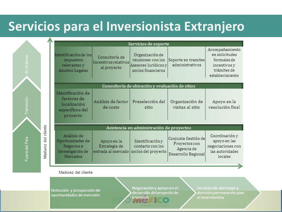 Servicios para el Inversionista Extranjero