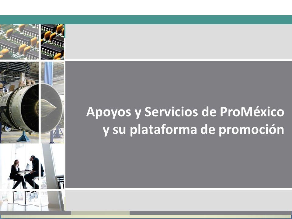 Apoyos y Servicios de ProMéxico y su plataforma de promoción