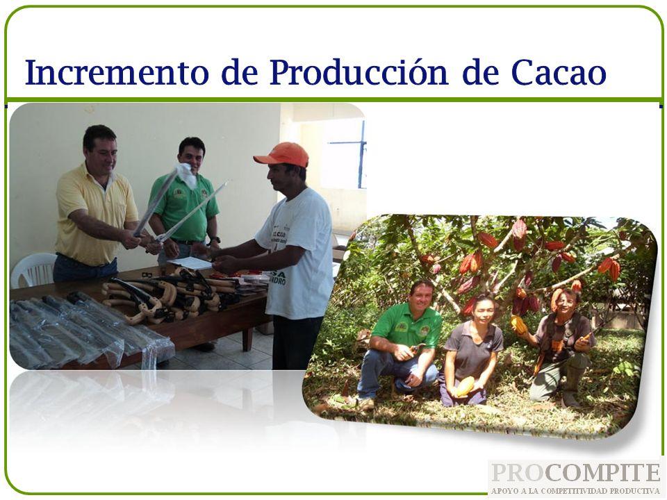 Incremento de Producción de Cacao