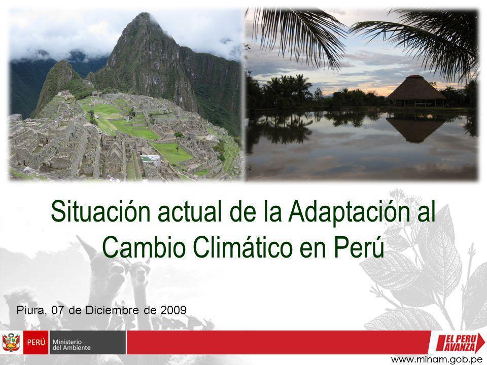 Situación actual de la Adaptación al Cambio Climático en Perú