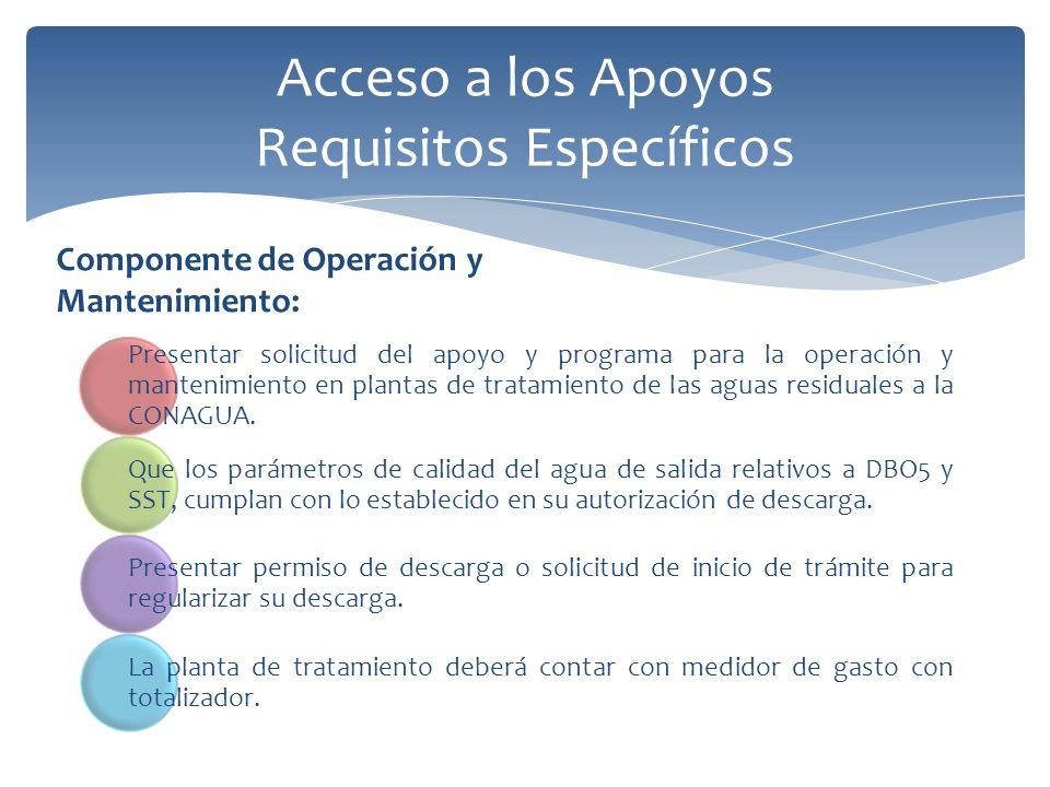 Acceso a los Apoyos Requisitos Específicos