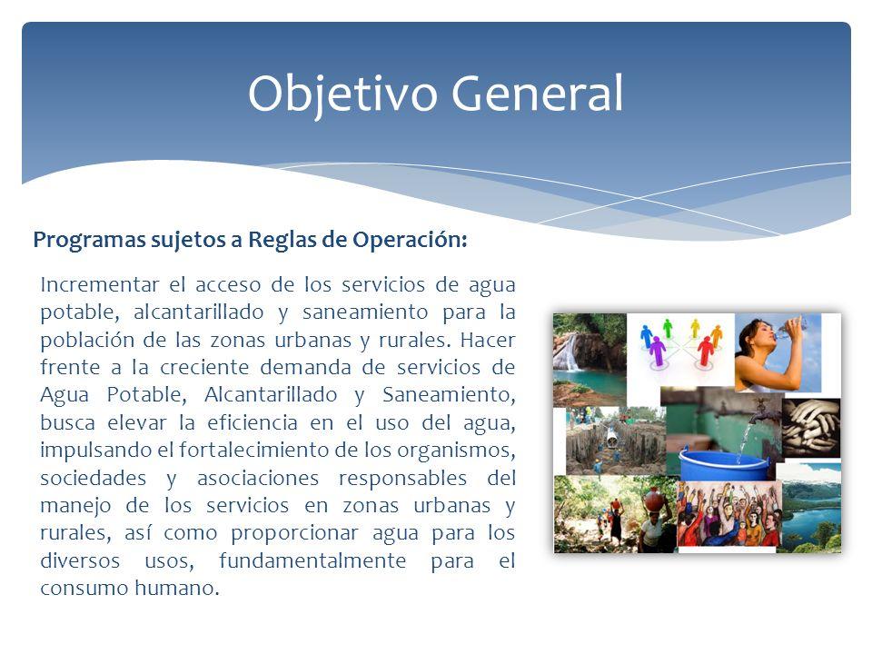 Objetivo General Programas sujetos a Reglas de Operación: