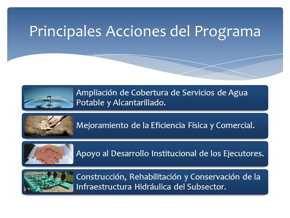 Principales Acciones del Programa