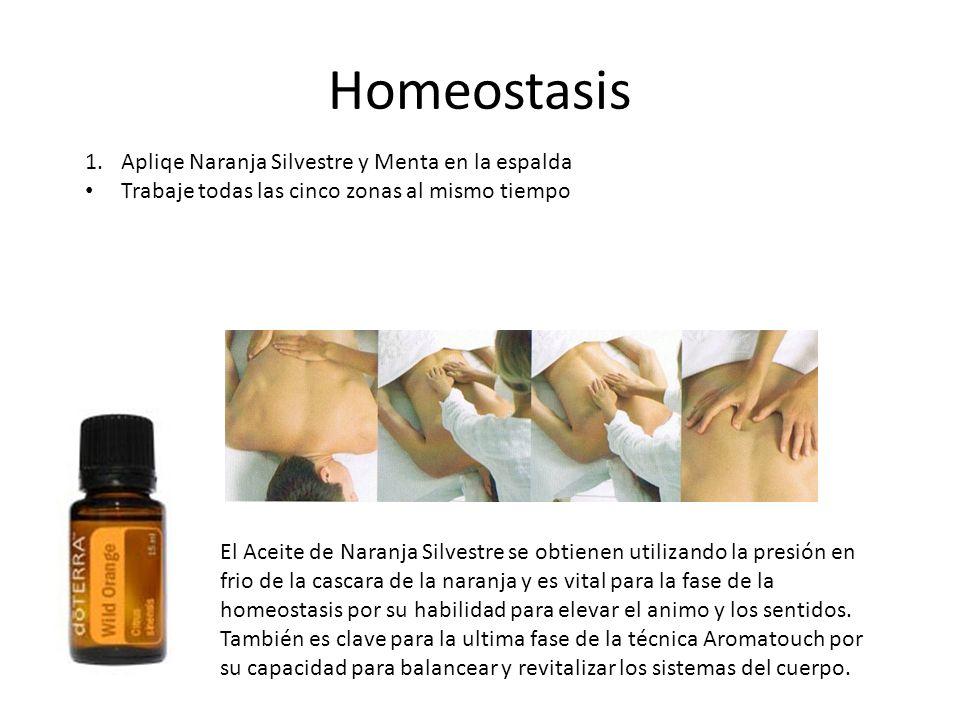 Homeostasis Apliqe Naranja Silvestre y Menta en la espalda