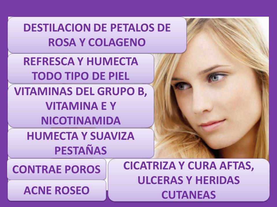 DESTILACION DE PETALOS DE ROSA Y COLAGENO