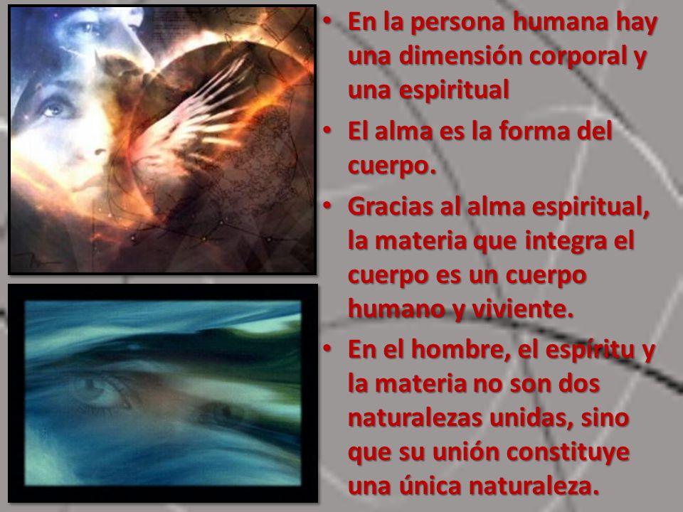 En la persona humana hay una dimensión corporal y una espiritual