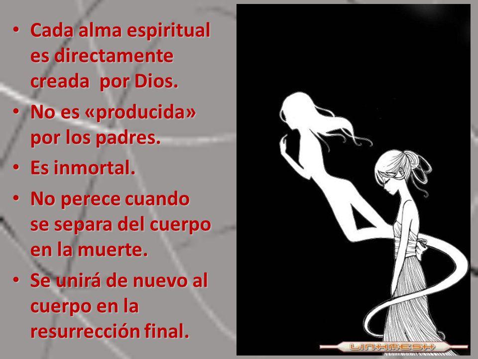 Cada alma espiritual es directamente creada por Dios.