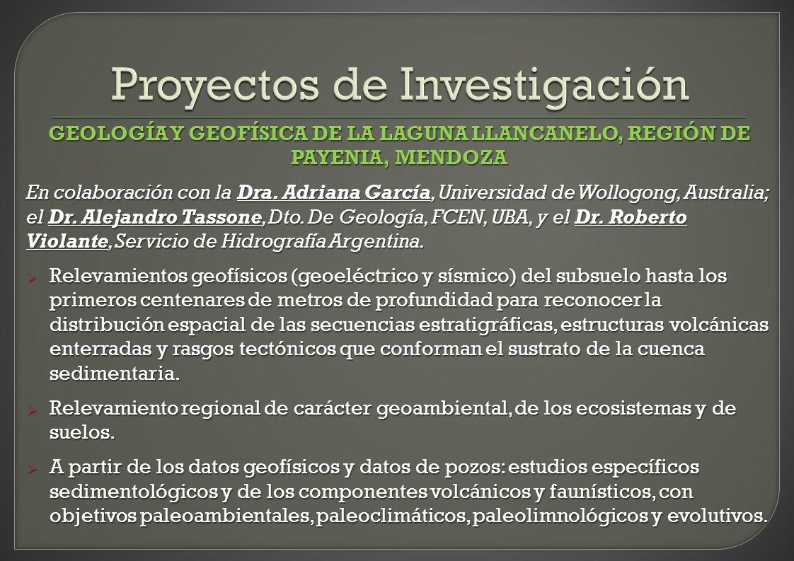 Proyectos de Investigación