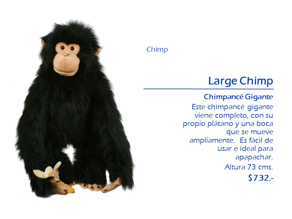 Large Chimp $732.- Chimpancé Gigante