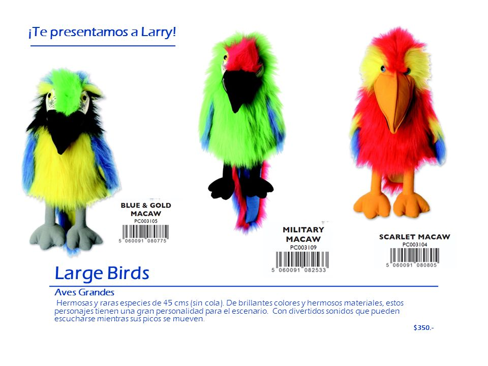 Large Birds ¡Te presentamos a Larry! Aves Grandes