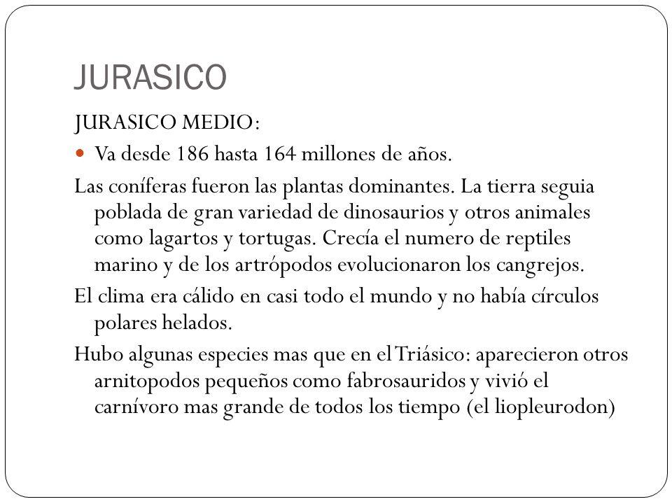 JURASICO JURASICO MEDIO: Va desde 186 hasta 164 millones de años.