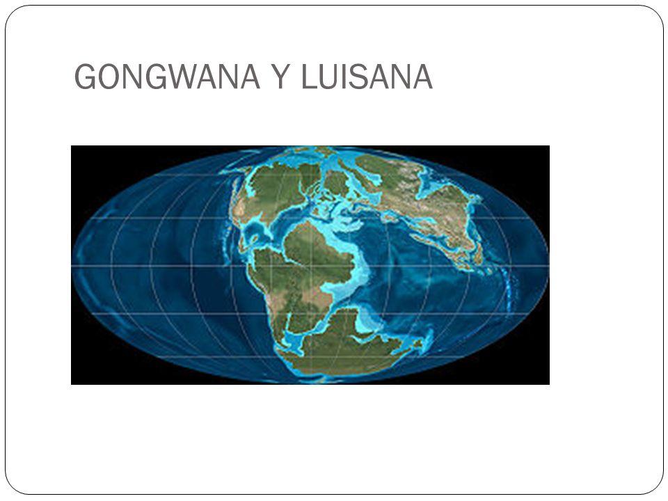 GONGWANA Y LUISANA