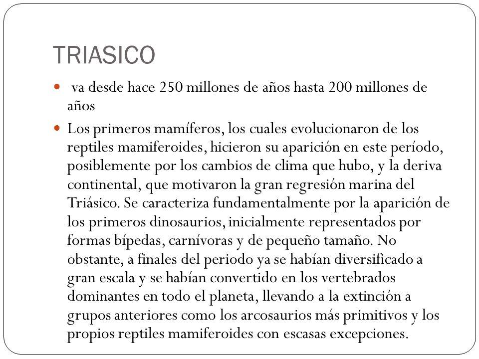 TRIASICO va desde hace 250 millones de años hasta 200 millones de años