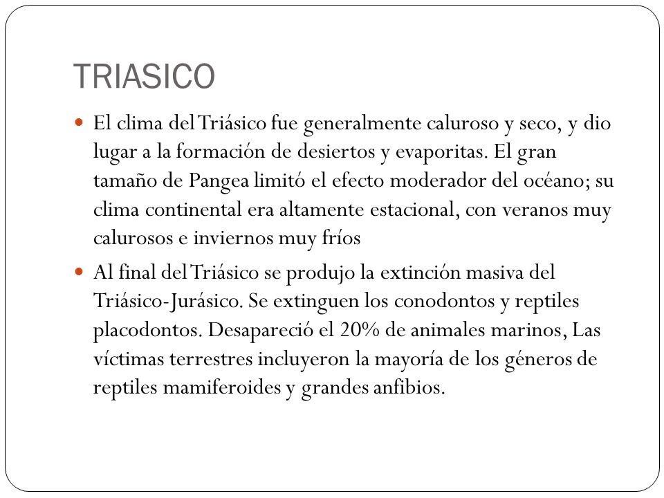 TRIASICO