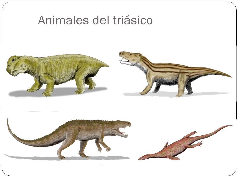 Animales del triásico