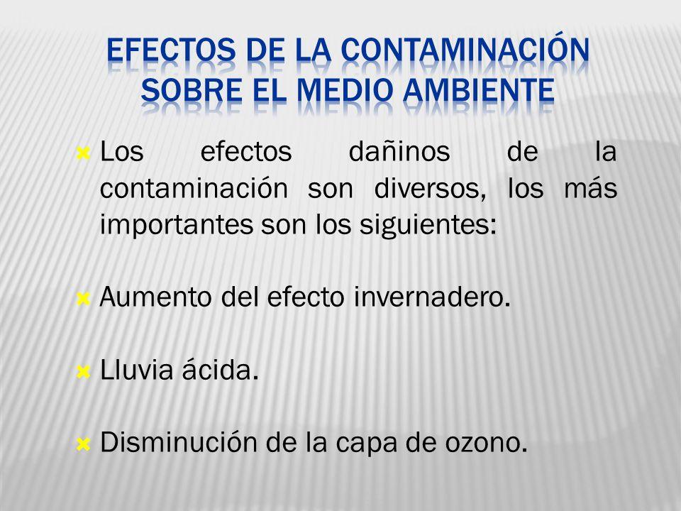 Efectos de la contaminación sobre el medio ambiente
