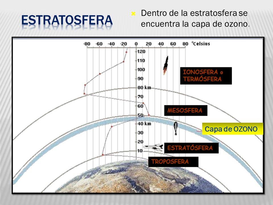 Estratosfera Dentro de la estratosfera se encuentra la capa de ozono.