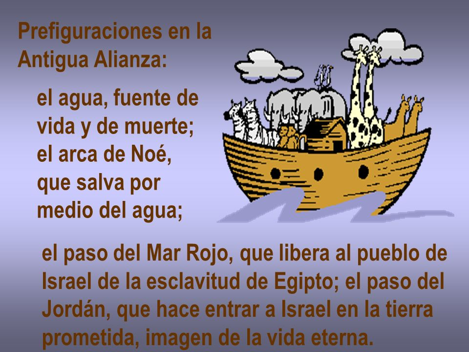 Prefiguraciones en laAntigua Alianza: el agua, fuente de. vida y de muerte; el arca de Noé, que salva por.