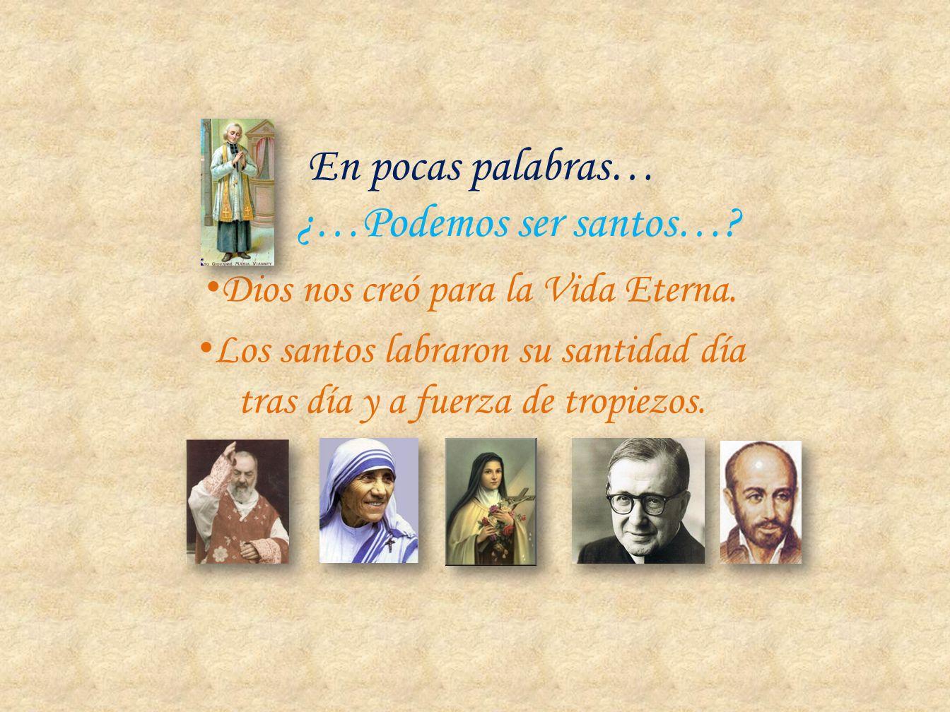 En pocas palabras… ¿…Podemos ser santos…
