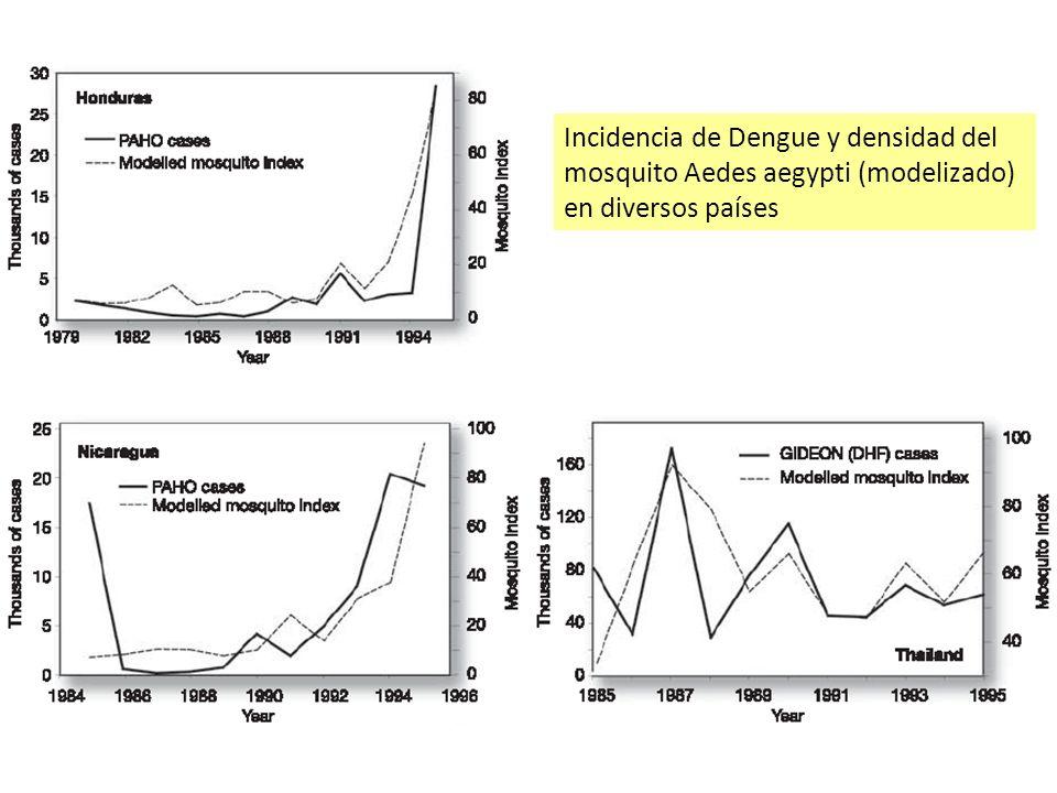 Incidencia de Dengue y densidad del mosquito Aedes aegypti (modelizado) en diversos países