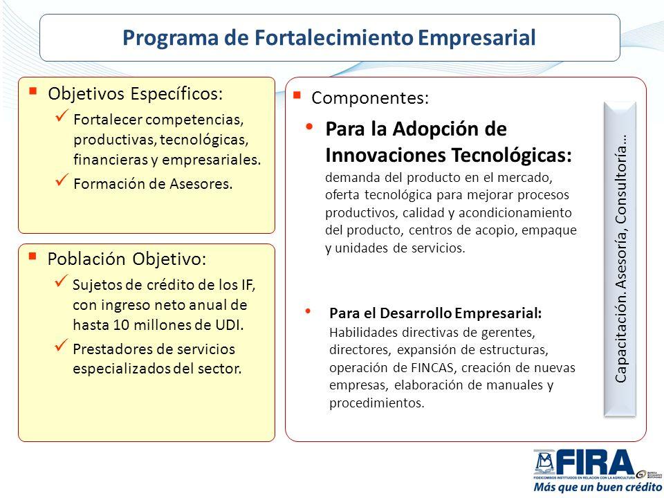 Programa de Fortalecimiento Empresarial