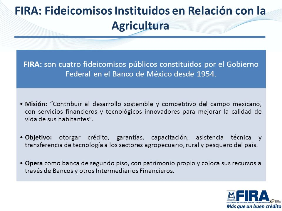 FIRA: Fideicomisos Instituidos en Relación con la Agricultura