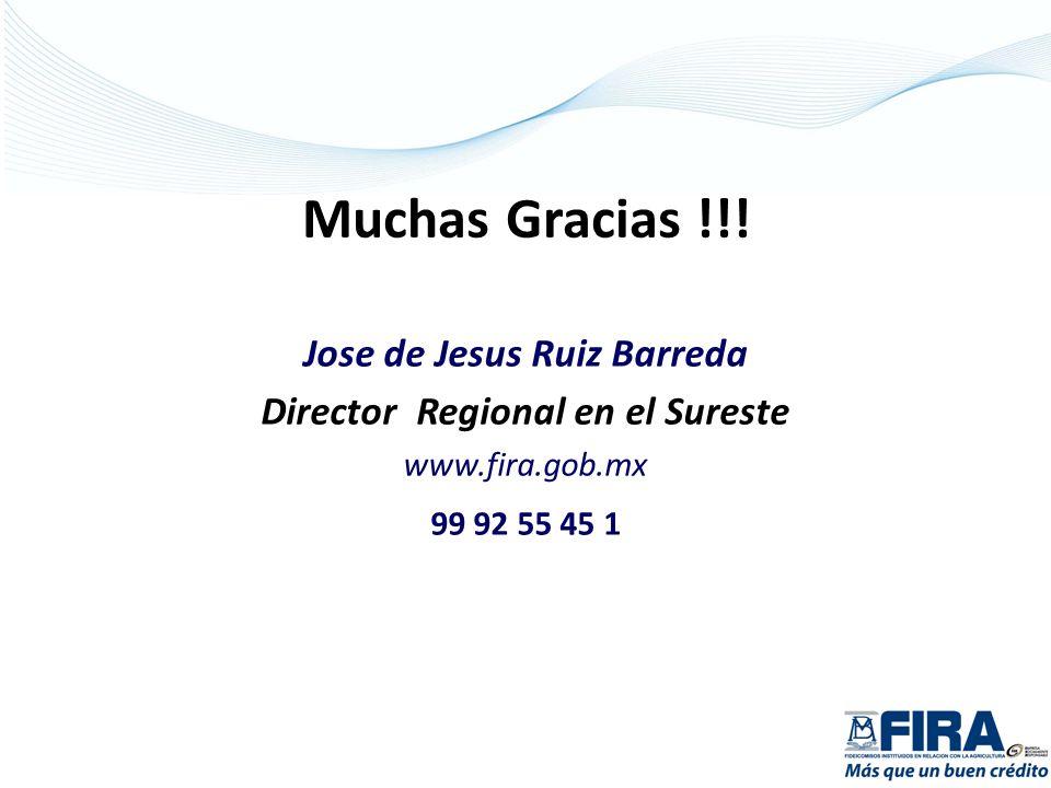 Jose de Jesus Ruiz Barreda Director Regional en el Sureste