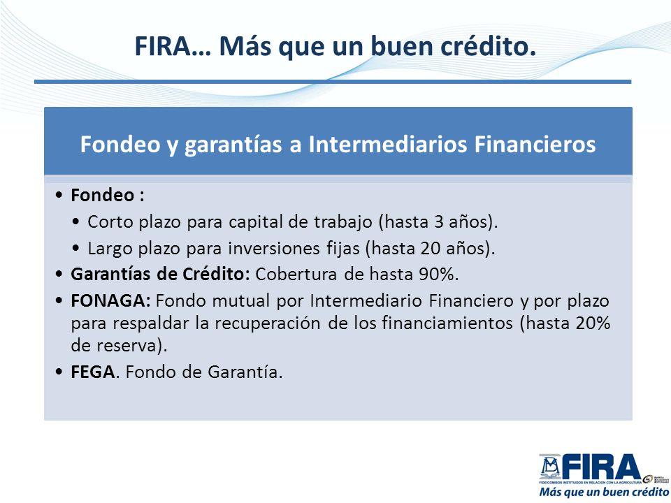 FIRA… Más que un buen crédito.