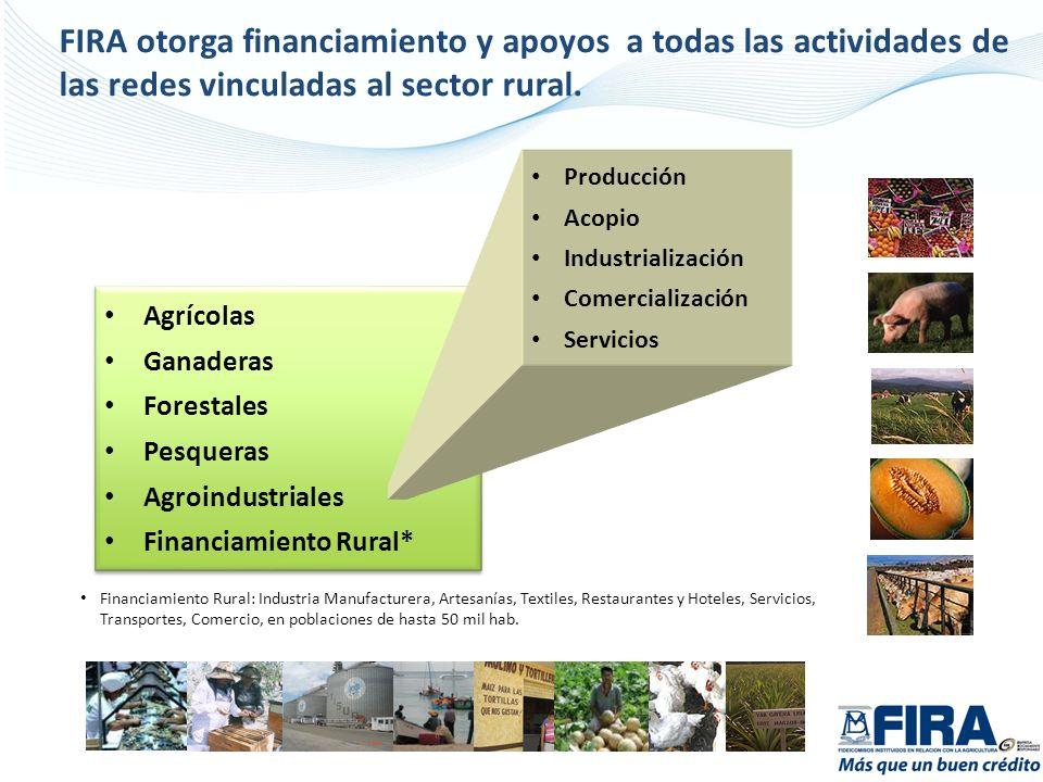 FIRA otorga financiamiento y apoyos a todas las actividades de las redes vinculadas al sector rural.